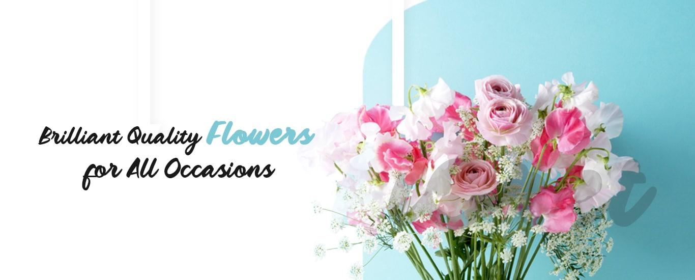 Onlineflowerwala - Cake Shop and Bakery, Florist and Flower Shop and Flower Decorators and Decoration Services in Shinde Ki Chhawani, Gwalior
