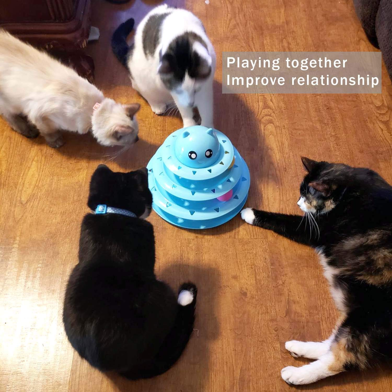 Pets Empire Cat Roller Toys, Three Layer Cat Toy,Kitten Three-Layer Intellectual Play Toy Removable Cat Turntable Disc,Pet Ball Roller Toy,1 Piece (Blue)