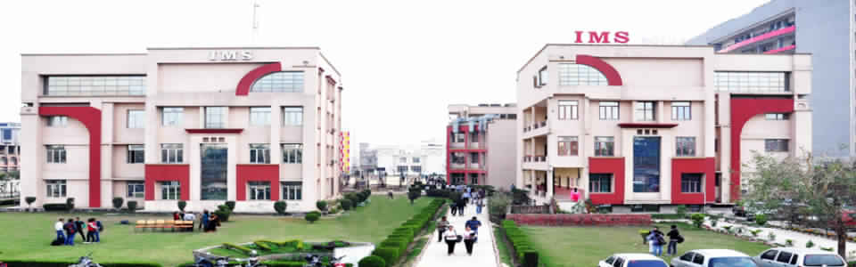 Institute Of Management Studies, Noida