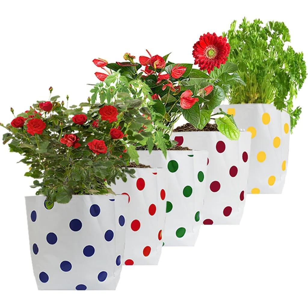 Trust Basket Dotted Grow Bag [20x20x35] - Magenta