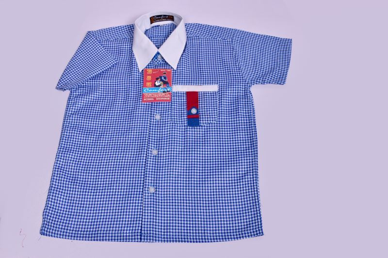 DAYANAND PUBLIC SCHOOL CHECK SHIRTS (30)