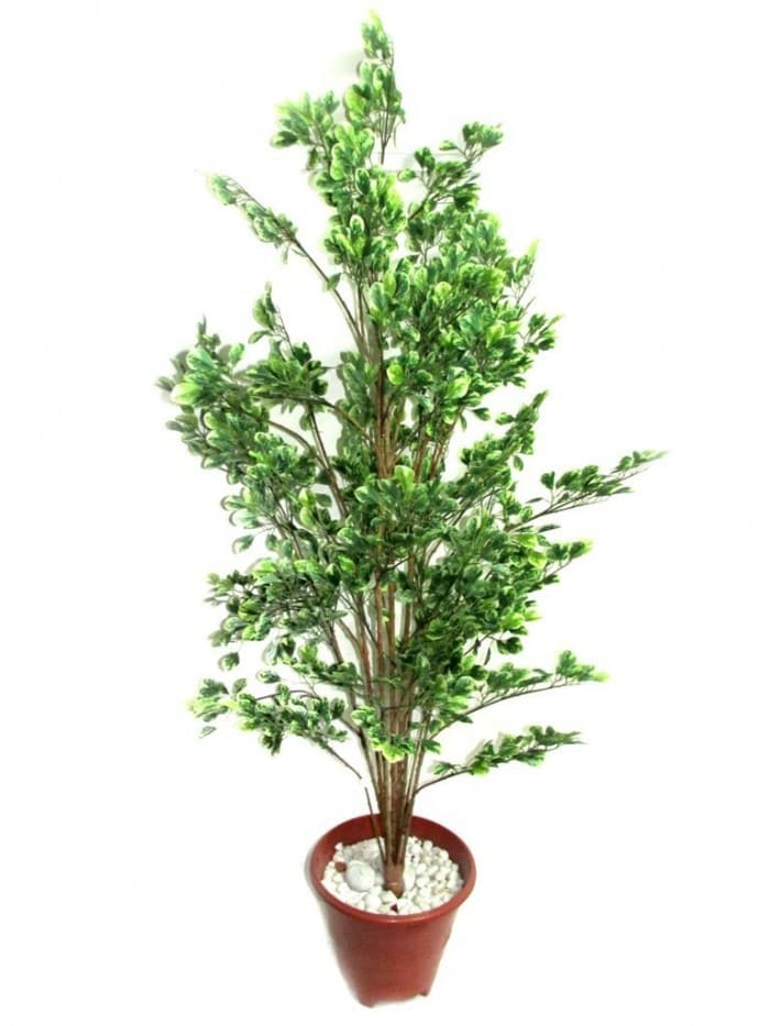 DECORATIVE ARTIFICIAL HOLLY PLANT (1692 LEAVES, 150 CM) WP52