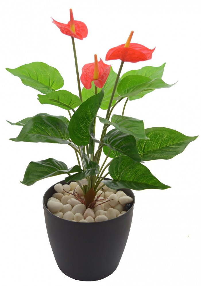 POLYURETHANE ARTIFICIAL ANTHURIUM PLANT WITH PVC COATED LEAVES (46 CM, RED) WP3