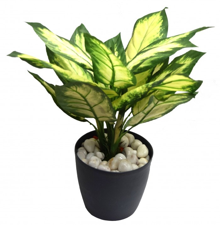 52CM TALL ARTIFICIAL DIEFFENBACHIA FLOOR PLANT WITHOUT POT (21 LEAVES, WHITE/GREEN SET OF 1) WP67