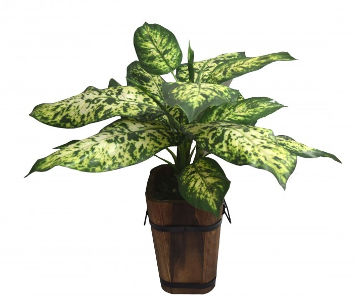 52CM TALL ARTIFICIAL DIEFFENBACHIA FLOOR PLANT WITHOUT POT (21 LEAVES,GREEN SET OF 1) WP68