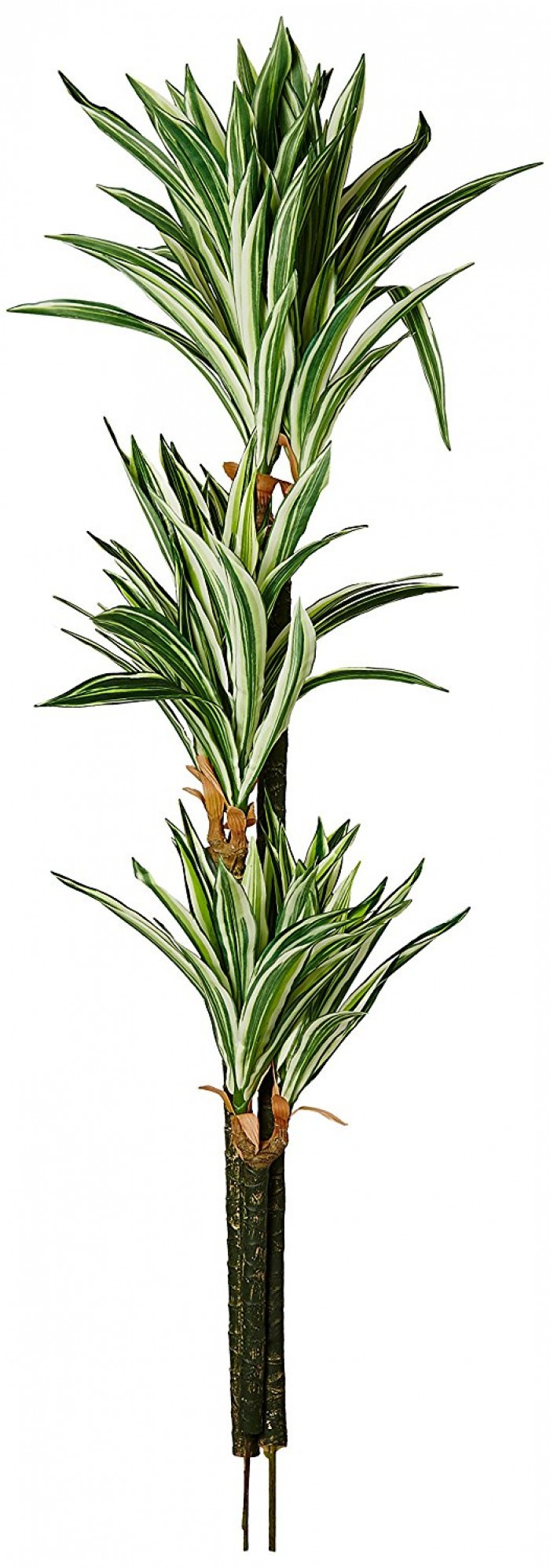 150CM TALL ARTIFICIAL DRACAENA FLOOR PLANT WITHOUT POT (192 LEAVES, GREEN) WP125