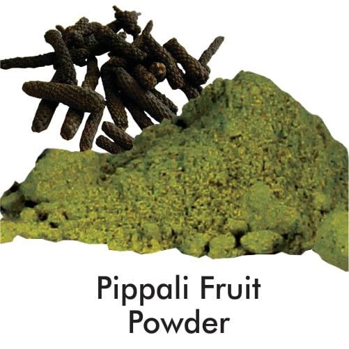 Pippali Fruit Powder - 1 Kg Powder