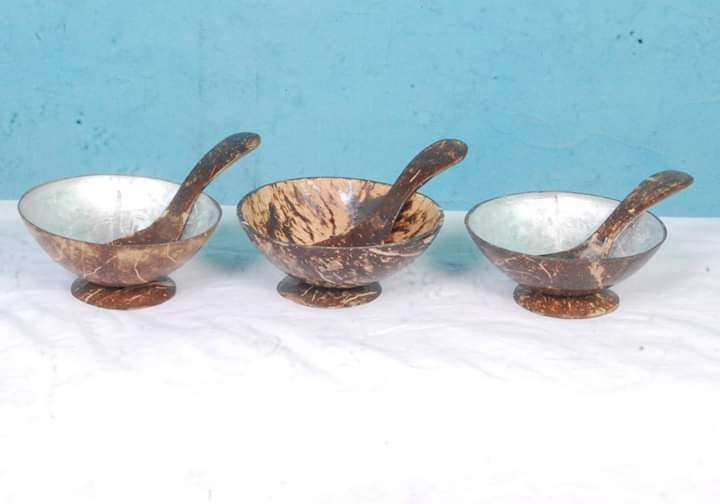 Coconut Shell Bowl And Spoon