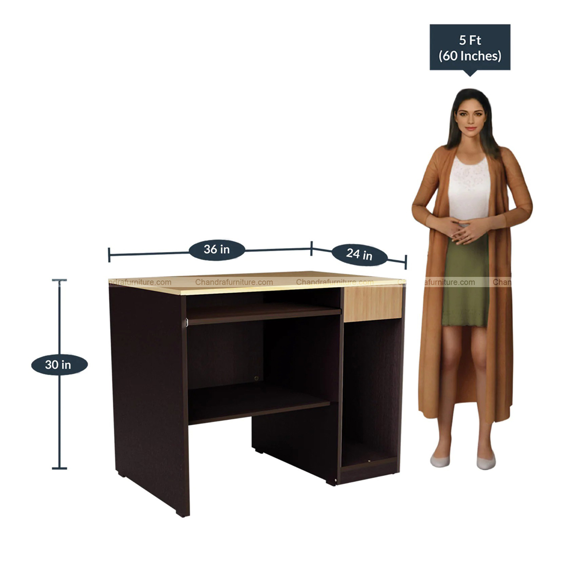 Chandra Furniture Study & Laptop Table In Wenge Finish