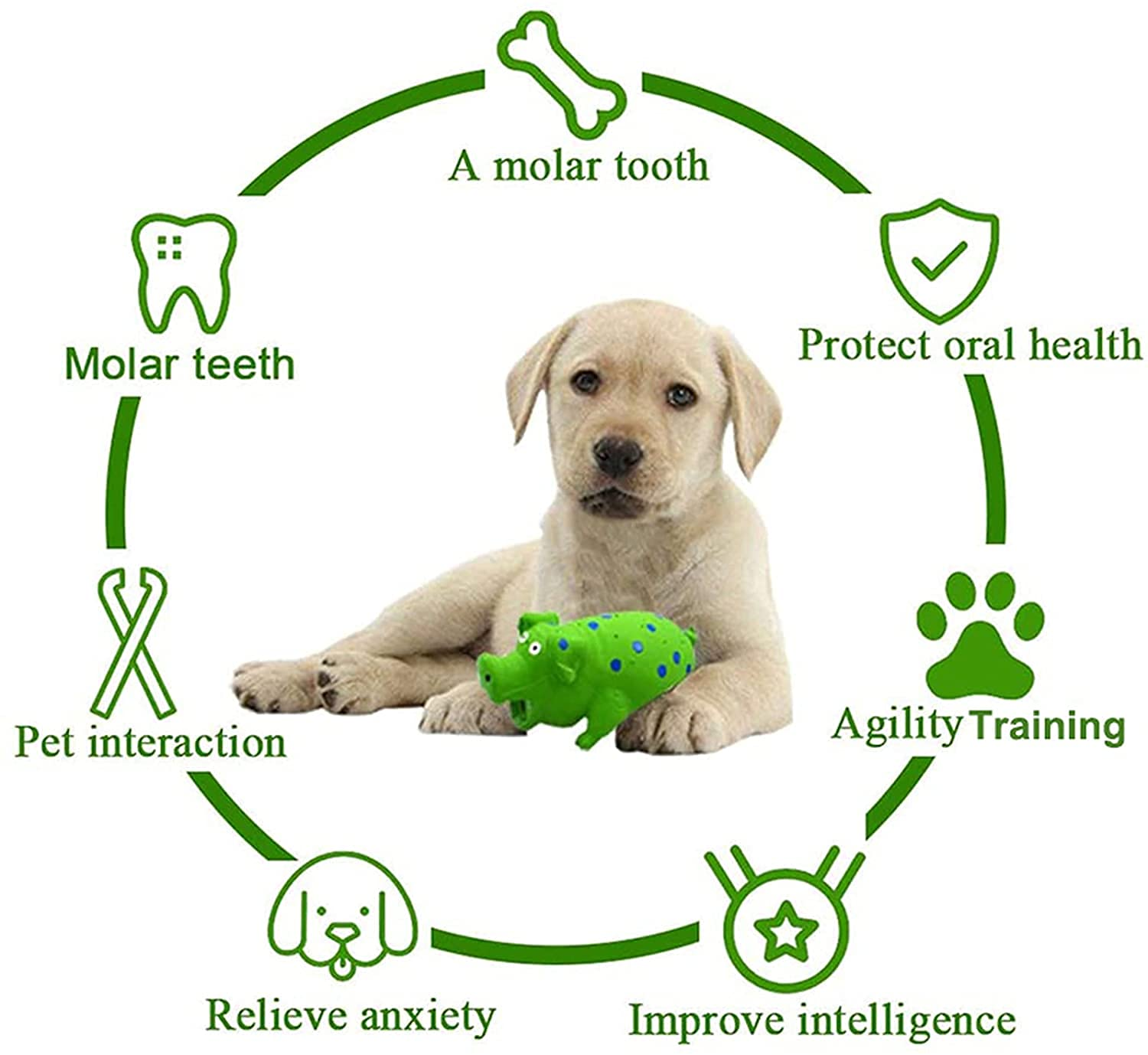 Pets Empire Dog Chew Squeaky Toys, Pig Latex Interactive Puppy Toy, Tough Durable Strong Toothbrush Teething Toys, For Small Medium Dogs-1 Piece
