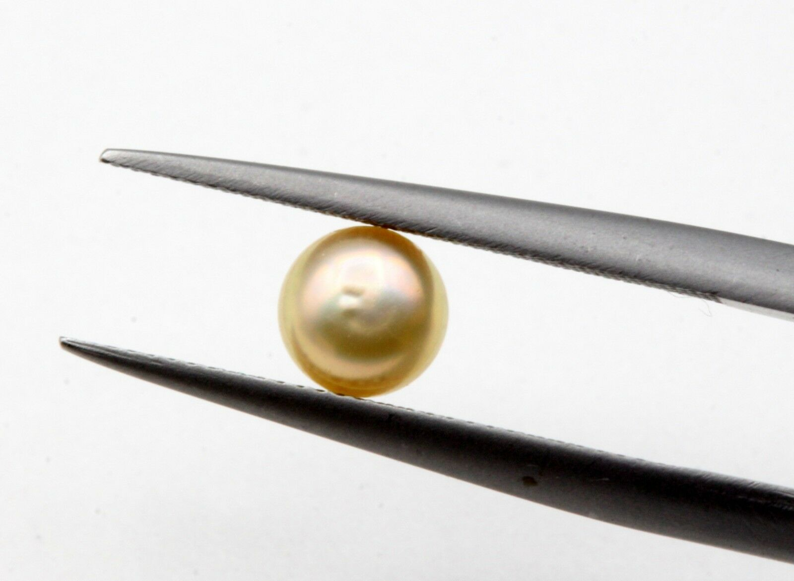 0.70 Ct Basra Pearl Loose Natural Pearl Cream Color Uneven Round Shape Certified