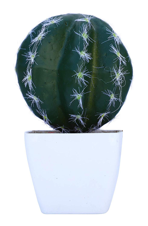 Artificial Cactus Plant NS1406