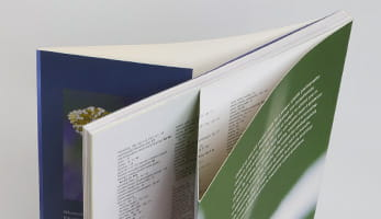 144 Page Book (One 8) (600, Flap, Royal)