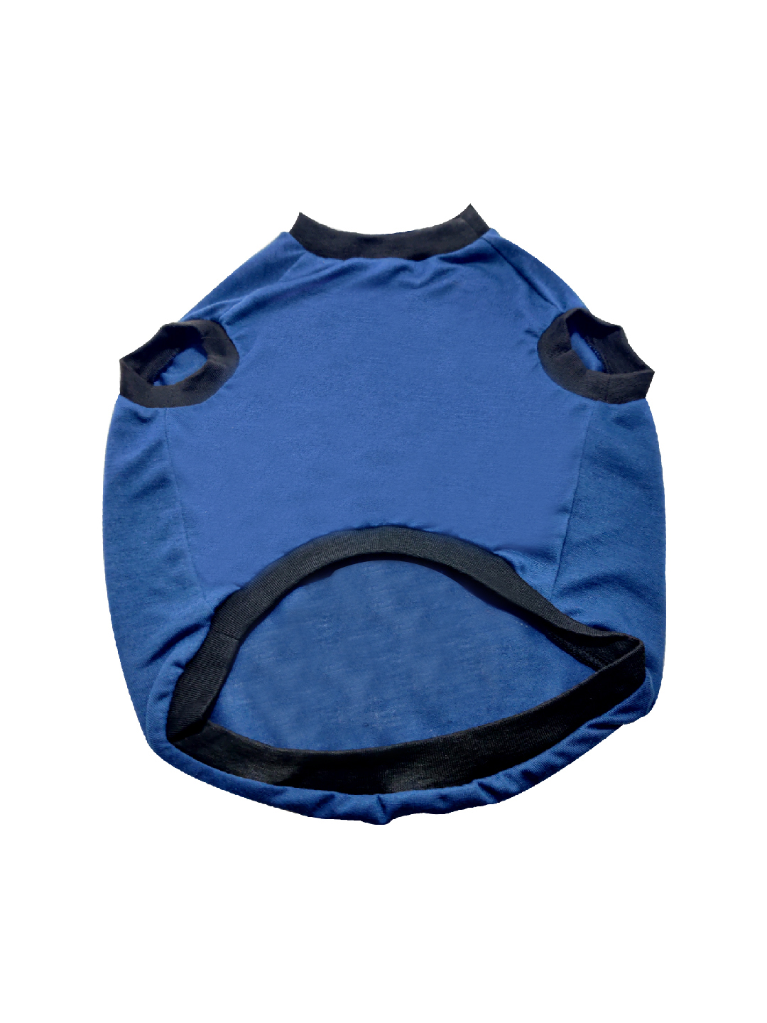 Pets Empire Certified Cookie Tester Summer Pet T-Shirt, Dogs Short Sleeve Colorful Letters Printed Breathable Vest Costumes. (BLUE, 10 INCH)