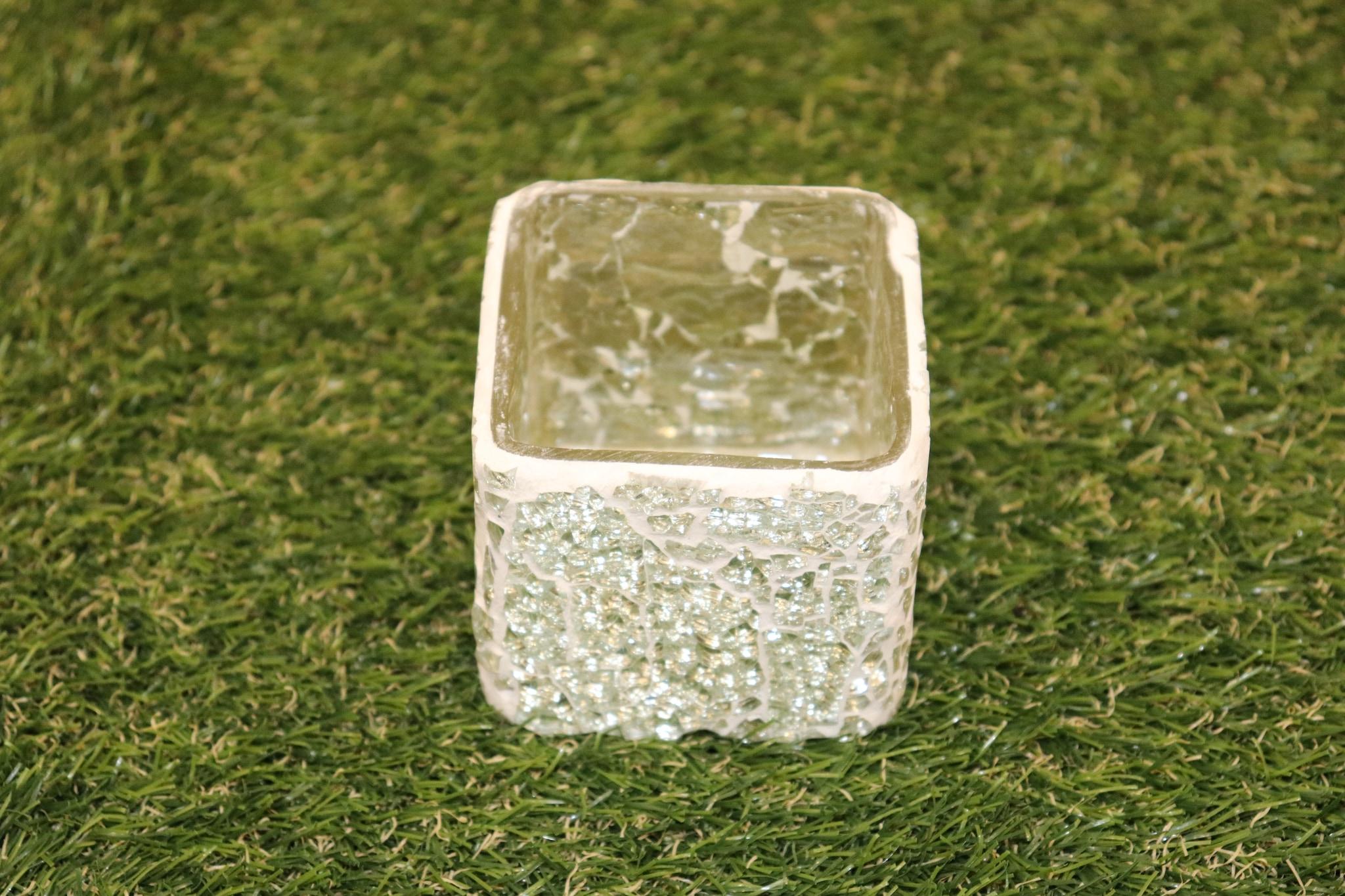 "Square Glass Pot 4"""