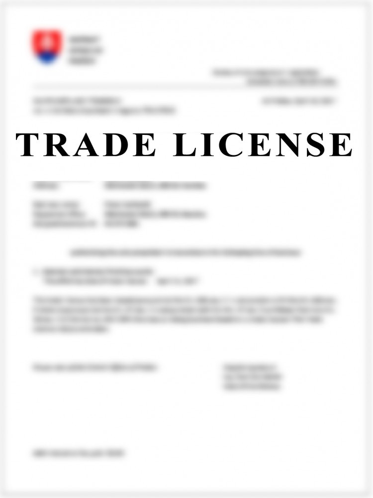 Trade Liscence Consultant