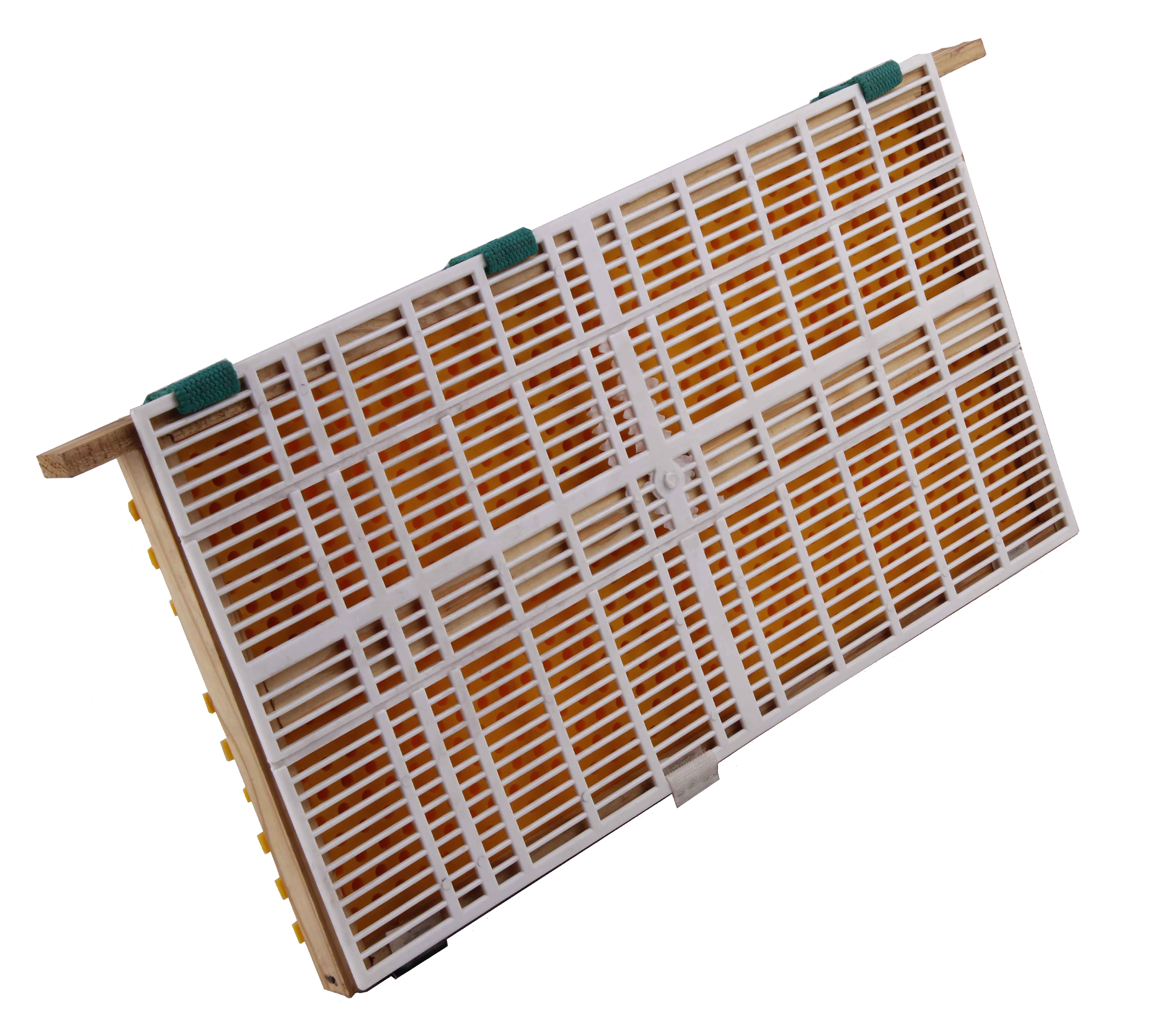 Royal Jelly Production Extraction Kit With SS Tray
