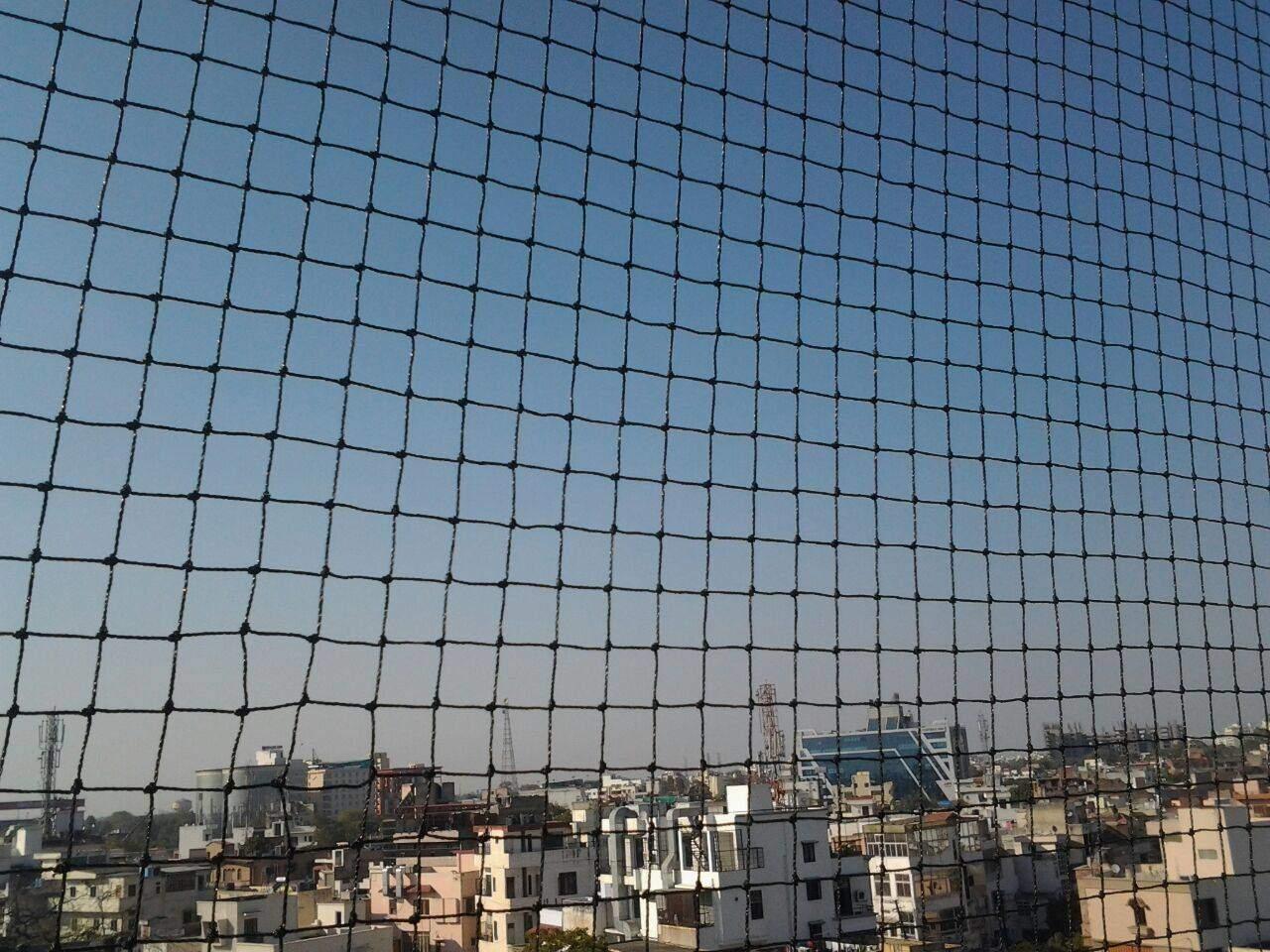 Samridhi Bird Net Bird Net 25 MM Black (10 Ft By 60 Ft)