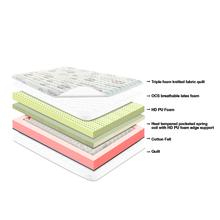 Resto Passion Pocketed Spring 8 Inch Mattress (75X66X8 Inch)