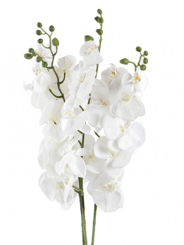 DECORATIVE ARTIFICIAL ORACHID FLOWER STEMS (90 CM TALL, WHITE) MSF32