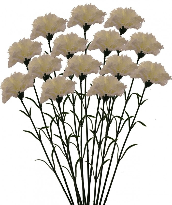 ARTIFICIAL SYNTHETIC SINGLE CARNATION FLOWER STICK (45 CM TALL, SET OF 15, WHITE) MSF3