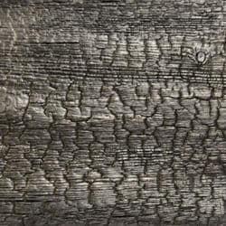 Isha Burnt Charcoal