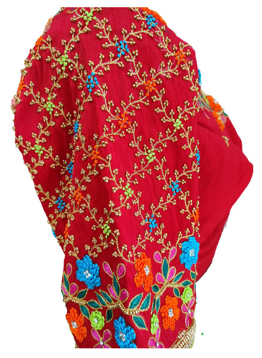 Womens Hand Embroidery Maggam Work Blouse (Red Colour)