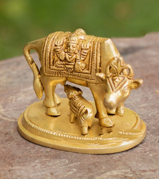 Divine Brass Komadha Or Pasukannu Idol For Pooja | Weight : 570 Gms, Height : 5.5 In | Pack Of 1