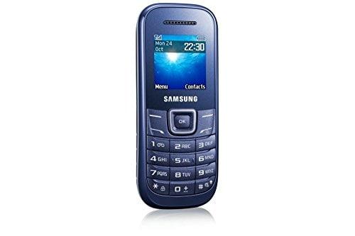 Samsung Guru 1207Y Mobile Phone (Blue)