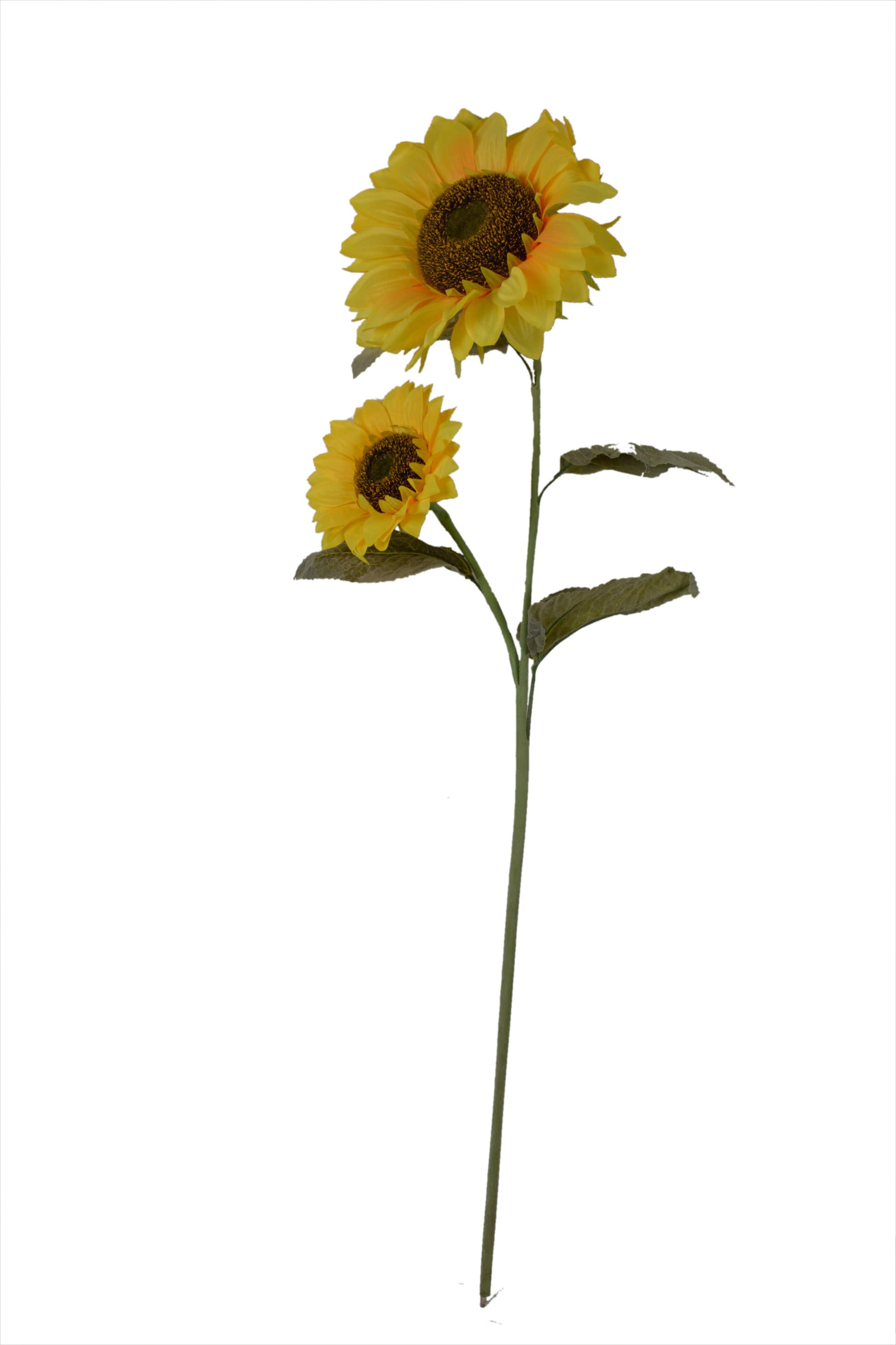 2 In 1 Sunflower Stick N128C1.1