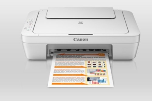 Canon MG2570 Multi-Function Color Inkjet Printer (White)