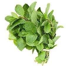 Mint Leaves Fresh/ Pudina Patha - Kedia Farm Fresh (Weight Can Vary)