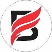 Bajson Shirts Logo