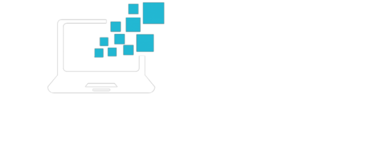 Soft Computers
